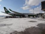 バンチャンさんが、函館空港で撮影したエバー航空 A330-203の航空フォト(写真)