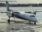 バンチャンさんが、函館空港で撮影したANAウイングス DHC-8-402Q Dash 8の航空フォト(写真)
