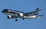 Bluewingさんが、羽田空港で撮影したスターフライヤー A320-214の航空フォト(写真)