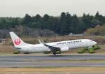 じーく。さんが、成田国際空港で撮影した日本航空 737-846の航空フォト(写真)