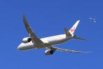 多楽さんが、成田国際空港で撮影した日本航空 787-9の航空フォト(写真)