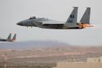 チャッピー・シミズさんが、ネリス空軍基地で撮影したアメリカ空軍 F-15E Strike Eagleの航空フォト(写真)