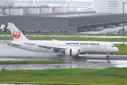 Dreamer-K'さんが、羽田空港で撮影した日本航空 787-8 Dreamlinerの航空フォト(写真)