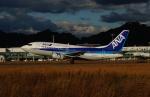 FRTさんが、松山空港で撮影したANAウイングス 737-5L9の航空フォト(写真)