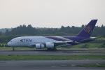 JA784Aさんが、成田国際空港で撮影したタイ国際航空 A380-841の航空フォト(写真)