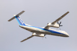 Aokenさんが、松山空港で撮影したANAウイングス DHC-8-402Q Dash 8の航空フォト(写真)