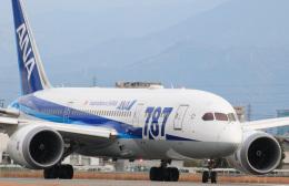 Aokenさんが、松山空港で撮影した全日空 787-8 Dreamlinerの航空フォト(写真)