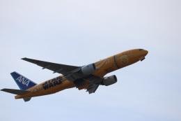 つっさんさんが、伊丹空港で撮影した全日空 777-281/ERの航空フォト(写真)