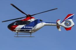 Wings Flapさんが、名古屋飛行場で撮影した毎日新聞社 EC135T1の航空フォト(写真)