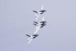ひこ☆さんが、築城基地で撮影した航空自衛隊 T-4の航空フォト(写真)