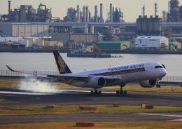 タミーさんが、羽田空港で撮影したシンガポール航空 A350-941XWBの航空フォト(写真)