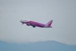 FRTさんが、松山空港で撮影したピーチ A320-214の航空フォト(飛行機 写真・画像)