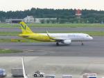 FRTさんが、成田国際空港で撮影したバニラエア A320-216の航空フォト(飛行機 写真・画像)