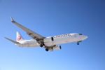 ATOMさんが、帯広空港で撮影した日本航空 737-846の航空フォト(写真)