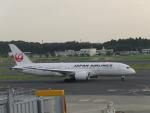 FRTさんが、成田国際空港で撮影した日本航空 787-8 Dreamlinerの航空フォト(写真)