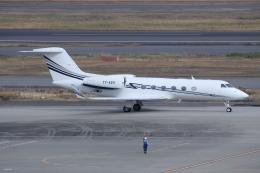 しゃこ隊さんが、羽田空港で撮影したエグゼクジェット・ミドル・イースト G-IV-X Gulfstream G450の航空フォト(飛行機 写真・画像)