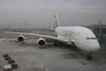 JA8075さんが、香港国際空港で撮影したエミレーツ航空 A380-861の航空フォト(写真)