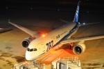 やす!さんが、仙台空港で撮影した全日空 787-8 Dreamlinerの航空フォト(写真)