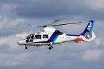 yabyanさんが、名古屋飛行場で撮影したオールニッポンヘリコプター AS365N3 Dauphin 2の航空フォト(飛行機 写真・画像)