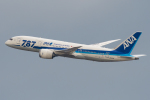 YAMMARさんが、仙台空港で撮影した全日空 787-8 Dreamlinerの航空フォト(写真)
