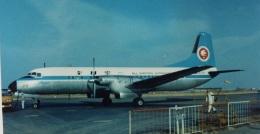TKOさんが、大分空港で撮影した全日空 YS-11A-213の航空フォト(飛行機 写真・画像)