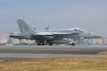 マリオ先輩さんが、横田基地で撮影したアメリカ海軍 F/A-18E Super Hornetの航空フォト(写真)