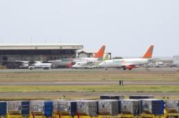 tasho0525さんが、ダニエル・K・イノウエ国際空港で撮影したトランスエア 737-2T4C/Advの航空フォト(飛行機 写真・画像)