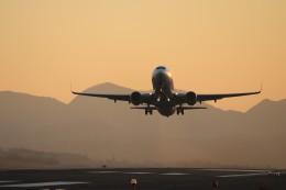 musashiさんが、鳥取空港で撮影した全日空 737-881の航空フォト(写真)