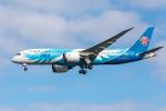Y-Kenzoさんが、羽田空港で撮影した中国南方航空 787-8 Dreamlinerの航空フォト(写真)
