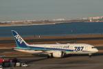 鷹輝@SKY TEAMさんが、羽田空港で撮影した全日空 787-8 Dreamlinerの航空フォト(写真)