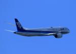 tuckerさんが、羽田空港で撮影した全日空 787-9の航空フォト(写真)