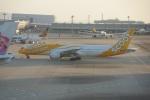 FRTさんが、関西国際空港で撮影したスクート (〜2017) 787-9の航空フォト(飛行機 写真・画像)