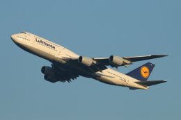 ceskykrumlovさんが、羽田空港で撮影したルフトハンザドイツ航空 747-830の航空フォト(飛行機 写真・画像)