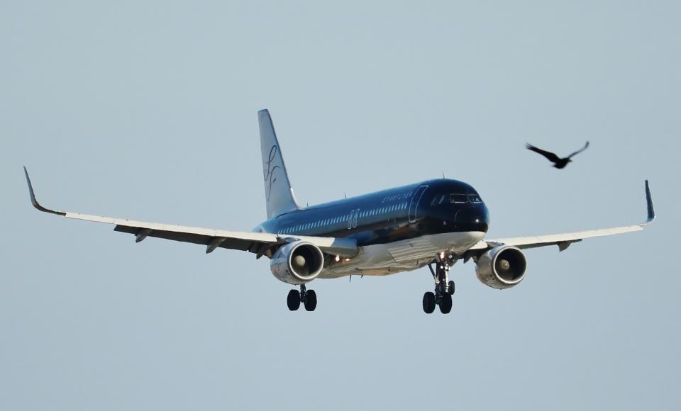 ヒロジーさんのスターフライヤー Airbus A320 (JA21MC) 航空フォト