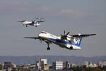 sumihan_2010さんが、伊丹空港で撮影したANAウイングス DHC-8-402Q Dash 8の航空フォト(写真)