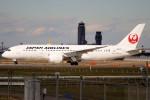 ばっきーさんが、成田国際空港で撮影した日本航空 787-8 Dreamlinerの航空フォト(写真)