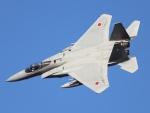 月明さんが、新田原基地で撮影した航空自衛隊 F-15J Eagleの航空フォト(写真)