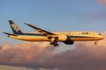 ばっきーさんが、成田国際空港で撮影した全日空 787-9の航空フォト(写真)