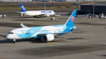 ぱん_くまさんが、羽田空港で撮影した中国南方航空 787-8 Dreamlinerの航空フォト(写真)