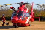Dickiesさんが、新天竜川橋北側運動公園グラウンドで撮影した浜松市消防航空隊 AS365N3 Dauphin 2の航空フォト(写真)