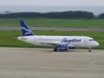 bannigsさんが、新潟空港で撮影したヤクティア・エア 100-95LRの航空フォト(写真)