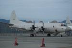 FRTさんが、岩国空港で撮影した海上自衛隊 EP-3の航空フォト(飛行機 写真・画像)