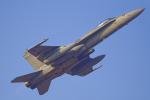 いっち〜@RJFMさんが、新田原基地で撮影したアメリカ海軍 F/A-18C Hornetの航空フォト(写真)