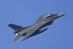 いっち〜@RJFMさんが、新田原基地で撮影した航空自衛隊 F-2Aの航空フォト(写真)