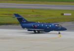 bannigsさんが、新潟空港で撮影した航空自衛隊 U-125A(Hawker 800)の航空フォト(写真)