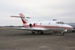 DONKEYさんが、新田原基地で撮影した航空自衛隊 U-125 (BAe-125-800FI)の航空フォト(写真)