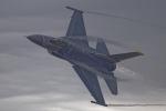 いっち〜@RJFMさんが、新田原基地で撮影したアメリカ空軍 F-16CM-50-CF Fighting Falconの航空フォト(写真)