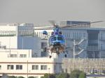 おっつんさんが、東京ヘリポートで撮影した警視庁 EC155B1の航空フォト(写真)