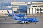 金魚さんが、中部国際空港で撮影した日本トランスオーシャン航空 737-8Q3の航空フォト(飛行機 写真・画像)