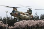 空とぶイルカさんが、熊谷基地で撮影した航空自衛隊 CH-47J/LRの航空フォト(写真)